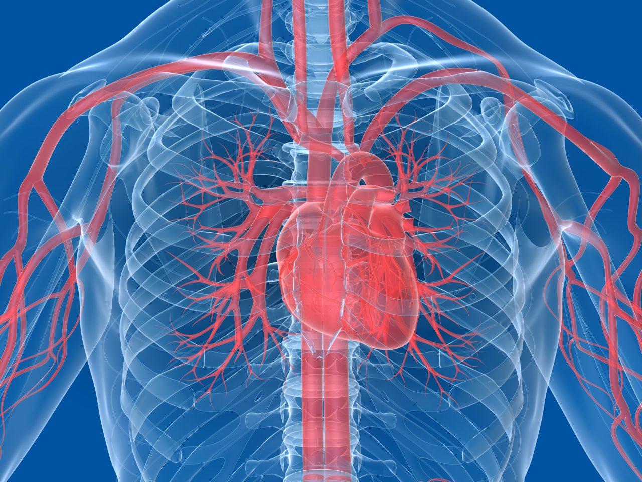 Erectile Dysfunction and Heart Disease