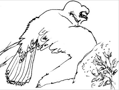 A Wounded Warrior Finds Healing Through Birds