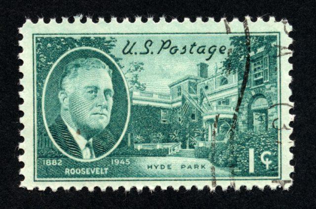 The Amazing Roosevelts