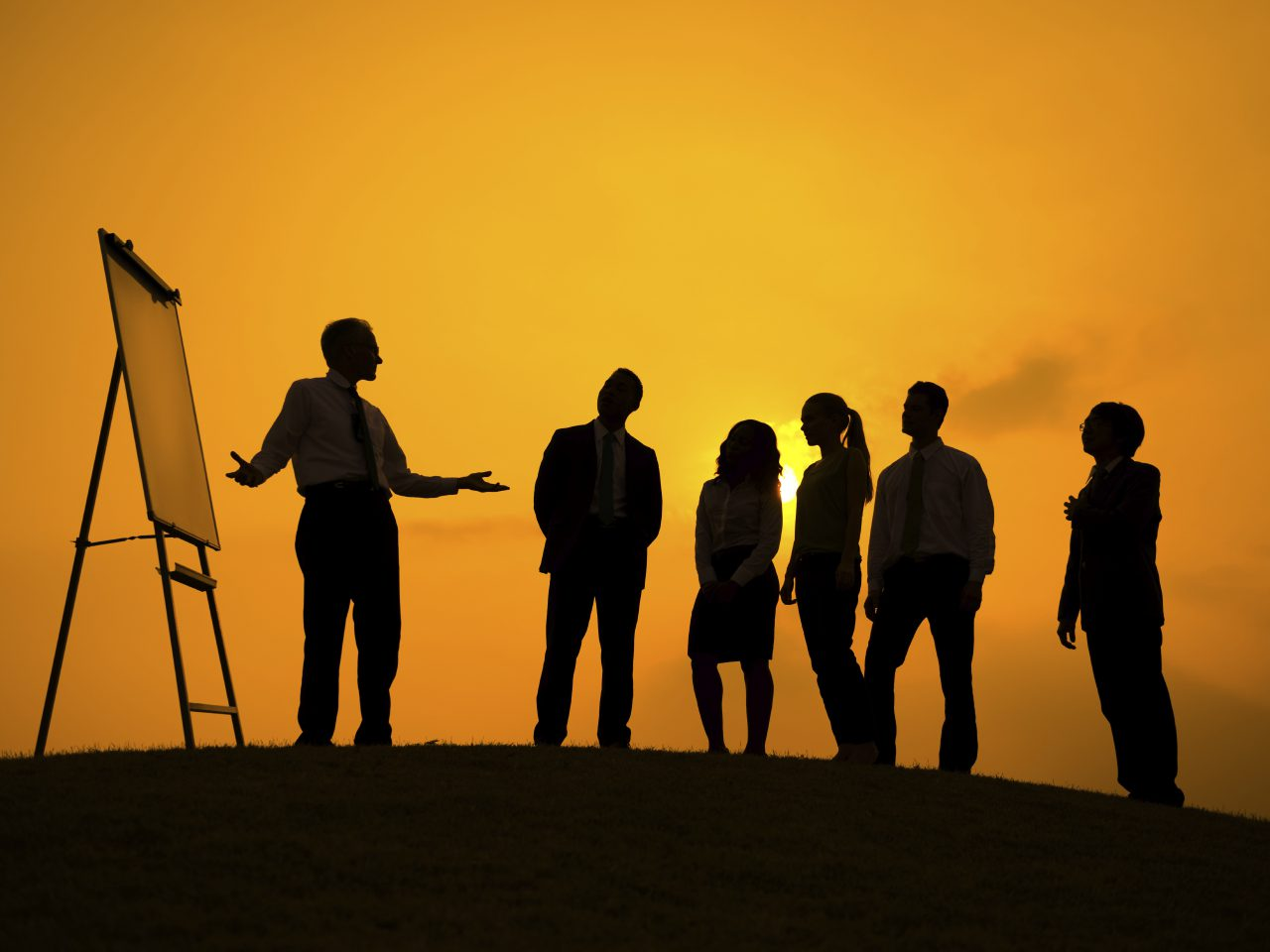 How Curious Leaders Succeed